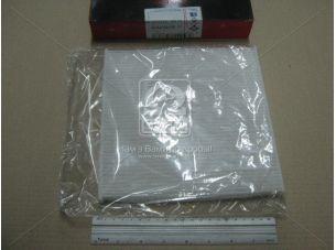 Фильтр салон LEXUS RX 400h (пр-во ASHIKA) 21-TY-TY12