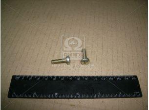 Винт М6х20 подлокотника ручки двери ВАЗ средн. (пр-во Белебей) 1/32764/01