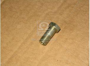 Болт М10х1,25х23 (пр-во Россия) 870007