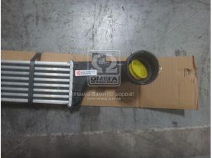 Интеркулер MB W210 E220CDi AC 98-02 (Van Wezel) 30004296